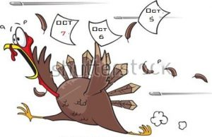 turkey-jpg2017